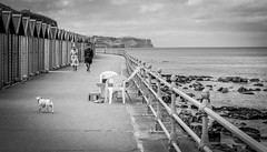 Whitby . (wayman2011) Tags: colinhart fujifilm50mmf2 fujifilmxt1 lightroom5 wayman2011 bw mono coast seaside promenades beachhuts doris northyorkshire whitby uk