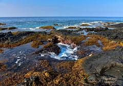 Paradise (R Dermo) Tags: sea water waves ocean park sky usa nature yellow reflections outdoors island rocks tropical beach landscape hawaii lava nikon horizon shoreline