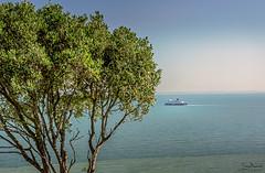 Off to France (Tony.Brasier) Tags: trees town tonybrasier nikond7200 sky sea grass lovely location s