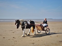 Somerset (Cat Thackstone) Tags: autumn sea horse beach seaside sand somerset cart brean location filming sanditon