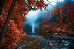 Washington Waterfall (Jon Dickson Photography) Tags: infrared washington snoqualmie waterfall moody river water trees misty fog