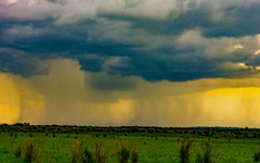 Summer storm (FVillalpando) Tags: storm weather sunset mexico countryside clouds light landscape rain ngysex nature