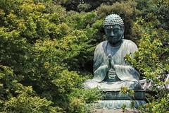 Bouddha en bronze au Temple de Tennoji, Yanaka, Tokyo (schneider_sebastien) Tags: tennoji yanaka tokyo japon japan eos77d canon77d bouddha bouddhiste bouddhisme bronze iso200 f50