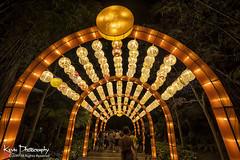 FXT10151 (kevinegng) Tags: singapore nightphotography nightscene evening night gardensbythebay lanterns lanternsfestival midautumnfestival multiexposuresstacking