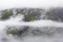 (Luis Kelly) Tags: grandas salime asturias españa spain north norte nature naturaleza trees árboles nubes clouds neblina