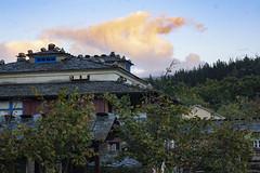 (Luis Kelly) Tags: grandas salime asturias españa spain north norte nature naturaleza trees árboles nubes clouds