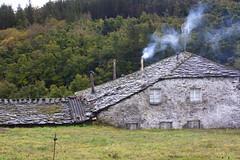 The Shire? (Luis Kelly) Tags: grandas salime asturias españa spain north norte nature naturaleza trees árboles hobbit comarca shire