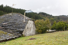 The Shire? (II) (Luis Kelly) Tags: grandas salime asturias españa spain north norte nature naturaleza trees árboles hobbit comarca shire
