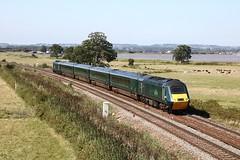 Green Streak @ Powderham (crashcalloway) Tags: class43 43198 driverbriancooper15june19475october1999 driverstanmartin25june19506november2004 shortset hst highspeedtrain hstgti intercity125 gwr greatwesternrailway powderhambridge powderham exminster starcross devon westcountry westofengland train railways
