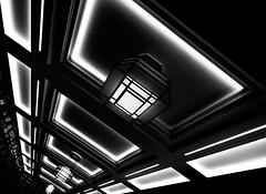 Dynamic Lighting (Sean Batten) Tags: london england unitedkingdom blackandwhite bw lights shadow library londonschoolofhygieneandtropicalmedicine city ubran openhouselondon nikon d800 1424