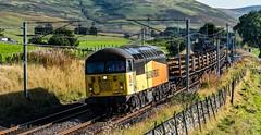 190541 Keith Sanders (Railcam) Tags: ukrailwaysscotland southlanarkshire abington coldchapel 56094 56049 longweldedrails carlisletomillerhill sunny