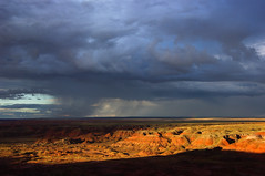 01-03-14 Monsoon clouds Petrified Forest National Wilderness Area (24) NPS-Stuart Holmes (PetrifiedForestNPS) Tags: wilderness petrifiedforestnationalwildernessarea petrifiedforest nationalpark backcountry