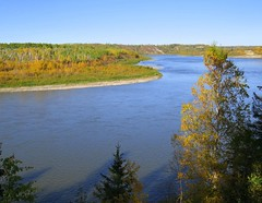 The Saskatchewan River , at the Forks 3 (Red Calf Studio) Tags: colleenwatsonturner redcalfstudio thesaskatchewanriverforks northsaskatchewanriver southsaskatchewanriver thesaskatchewanriver mixedwoodforest spruce aspen autumn waterways indigenouspeople historicalrivers deadfall freshwater thelivingearth