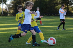 """HBC Voetbal • <a style=""""font-size:0.8em;"""" href=""""http://www.flickr.com/photos/151401055@N04/48777057233/"""" target=""""_blank"""">View on Flickr</a>"""