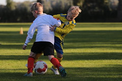 """HBC Voetbal • <a style=""""font-size:0.8em;"""" href=""""http://www.flickr.com/photos/151401055@N04/48777057443/"""" target=""""_blank"""">View on Flickr</a>"""