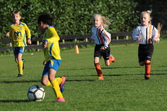 """HBC Voetbal • <a style=""""font-size:0.8em;"""" href=""""http://www.flickr.com/photos/151401055@N04/48777059448/"""" target=""""_blank"""">View on Flickr</a>"""
