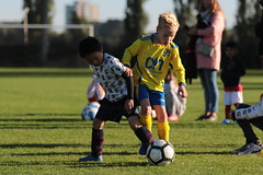 """HBC Voetbal • <a style=""""font-size:0.8em;"""" href=""""http://www.flickr.com/photos/151401055@N04/48777060028/"""" target=""""_blank"""">View on Flickr</a>"""