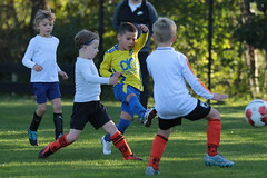 """HBC Voetbal • <a style=""""font-size:0.8em;"""" href=""""http://www.flickr.com/photos/151401055@N04/48777409606/"""" target=""""_blank"""">View on Flickr</a>"""