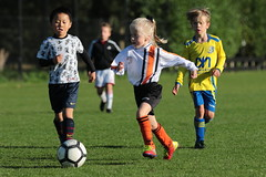 """HBC Voetbal • <a style=""""font-size:0.8em;"""" href=""""http://www.flickr.com/photos/151401055@N04/48777412476/"""" target=""""_blank"""">View on Flickr</a>"""