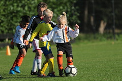 """HBC Voetbal • <a style=""""font-size:0.8em;"""" href=""""http://www.flickr.com/photos/151401055@N04/48777415181/"""" target=""""_blank"""">View on Flickr</a>"""