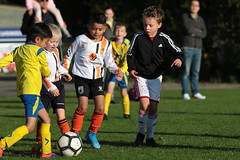"""HBC Voetbal • <a style=""""font-size:0.8em;"""" href=""""http://www.flickr.com/photos/151401055@N04/48777415996/"""" target=""""_blank"""">View on Flickr</a>"""