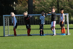 """HBC Voetbal • <a style=""""font-size:0.8em;"""" href=""""http://www.flickr.com/photos/151401055@N04/48777420326/"""" target=""""_blank"""">View on Flickr</a>"""