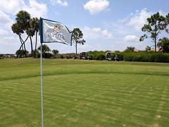 MrUlster 20190906 - Florida - IMG_20190906_140831 (Mr Ulster) Tags: golf florida