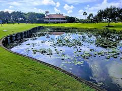 MrUlster 20190908 - Florida - EFFECTS (Mr Ulster) Tags: landscape golf florida