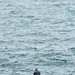 Fishing on Enoshima