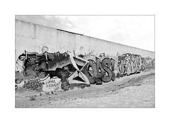 Graffiti (Franco & Lia) Tags: graffiti streetart alghero sardegna sardinia biancoenero blackwhite noiretblanc schwarzundweiss highkey