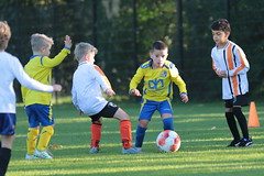 """HBC Voetbal • <a style=""""font-size:0.8em;"""" href=""""http://www.flickr.com/photos/151401055@N04/48777599012/"""" target=""""_blank"""">View on Flickr</a>"""