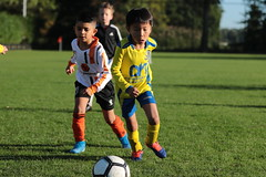 """HBC Voetbal • <a style=""""font-size:0.8em;"""" href=""""http://www.flickr.com/photos/151401055@N04/48777604942/"""" target=""""_blank"""">View on Flickr</a>"""