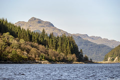 The upper reaches of Loch Long, by Finnart; Firth of Clyde, Scotland (Michael Leek Photography) Tags: landscape water firthofclyde clyde lochlong finnart scotland westcoastofscotland westernscotland cowal cowalpeninsula thisisscotland scottishlandscapes scotlandslandscapes scottishhighlands scottishcoastline scotlandsbeauty scotlandslochs landscapes michaelleek michaelleekphotography argyllandbute argyll argyllbute