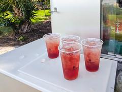 MrUlster 20190908 - Florida - IMG_20190908_102517 (Mr Ulster) Tags: landscape golf drink florida