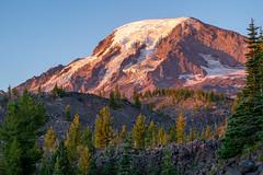 Mt. Adams near Muddy Meadow (Laura Jacobsen) Tags: mountains mtadams washington wilderness