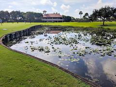 MrUlster 20190908 - Florida - IMG_20190908_095950 (Mr Ulster) Tags: landscape golf florida