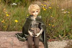 DSC_0359 (Breki kex) Tags: fairyland mirwen minifee bjd