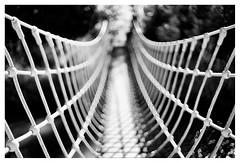 Rope bridge (leo.roos) Tags: bw brug lijn curv perspec 35 manu voigt patro repe cosina a7 cv mmount darosa voigtlander3514 nokton3514 leoroos voigtlandernoktonclassicsc35mmf14vm noiretblanc veere ropebridge touwbrug veersebos haflingerhof campingdeheksenketel