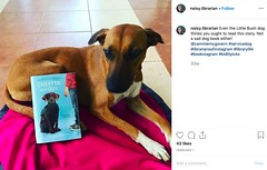 INSTA-BookPromoDog (The Daring Librarian) Tags: instagram instagramapp example book promo bookface reading promotion