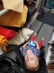 Fabric store toddler (quinn.anya) Tags: eliza toddler fabricstore stonemountaindaughter
