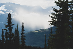 Revelstoke-Meadows-in-the-Sky-11 (_futurelandscapes_) Tags: mountains meadowsinthesky parkway trail revelstoke rockymountains bc britishcolumbia beautiful misty cloudy sunbeam view aerial above overhead vista borealforest alpine forest trees silhouettes sunset