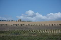 Summer in Sicily (remiklitsch) Tags: sky panoramic panorama landscape summer sicily italy remiklitsch nikon