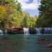 Albert Falls