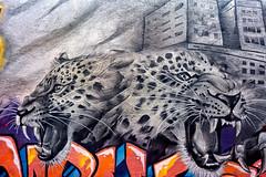 Snarling Jaguars (Atelier Teee) Tags: terencefaircloth atelierteee mural streetart chicago illinois logansquare