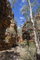 Alligator Gorge 1 (oz_lightning) Tags: australia canon6d canonef1635mmf4lis mountremarkablenp sa southernflindersranges geology hdr landscape nature