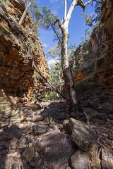 Alligator Gorge 3 (oz_lightning) Tags: australia canon6d canonef1635mmf4lis mountremarkablenp sa southernflindersranges geology hdr landscape nature mountremarkablenationalpark southaustralia
