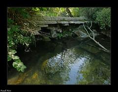 vieux barrage sur la Furieuse - Jura (francky25) Tags: vieux barrage sur la furieuse jura franchecomté rivière étiage