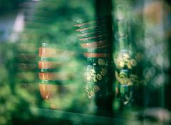 a green reflection (Kenji Kitae) Tags: glass green nature lifestyle lifework location life hiroshima japan earth