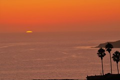 Last Sunset For Summer 2019 (Joey Z1) Tags: lastsummersunsetfor2019 lasunset sundippingintothepacific endofsummerhues ranchopalosverdescliffs pacificocean palmtrees sola lifeinla photojournalism polychromatic pentaxks1 photobyjoeyzanotti