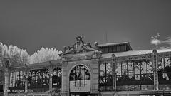 Les Halles de Narbonne (markbangert) Tags: halles narbonne market indoor art deco historic france fuji xt1 infrared infrarot infrarouge 700nm